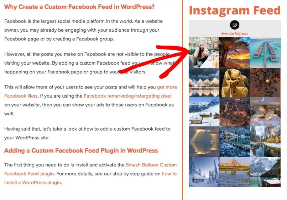 social media widget wordpress example